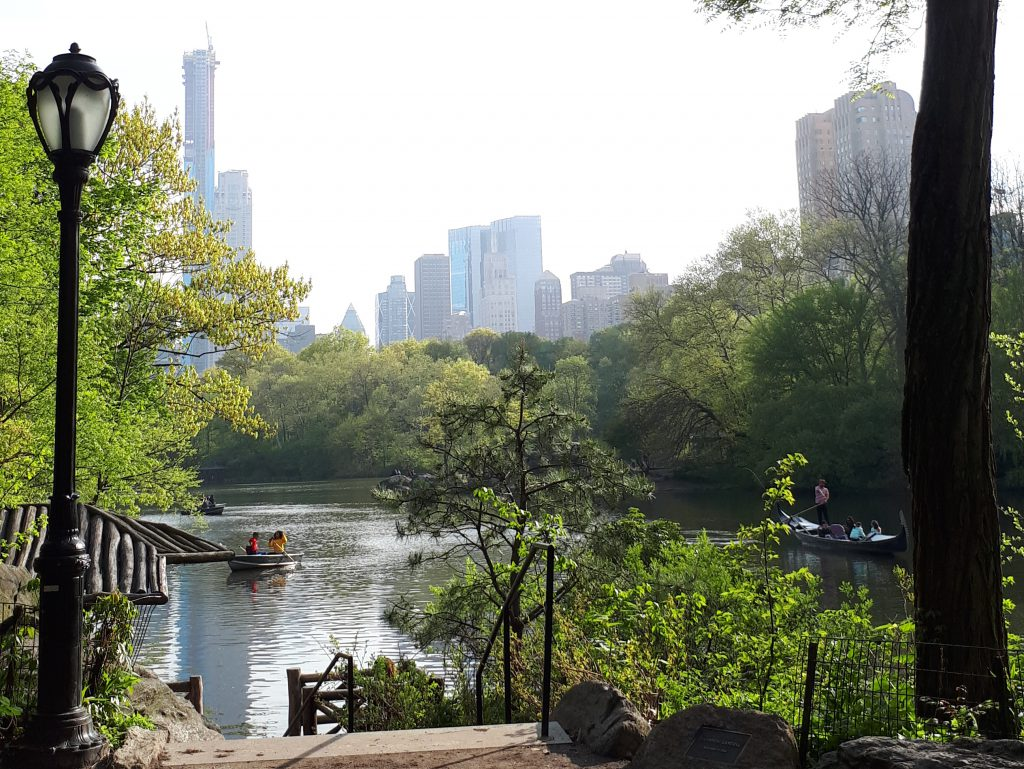 Amazing view in Central Park
