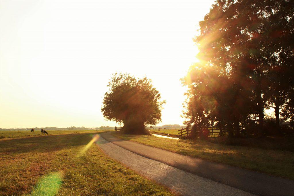 Sunset Zoeterwoude