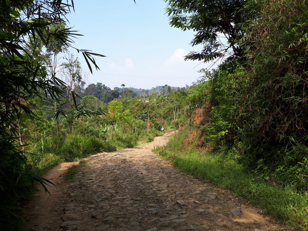 Road through the moutains of Cianjur
